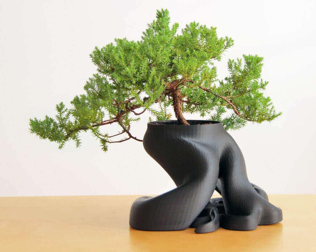 Bonsai-Planter-3D-Print
